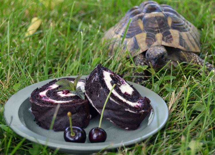 Roláda vyfocená na talířku v trávě se želvou v pozadí